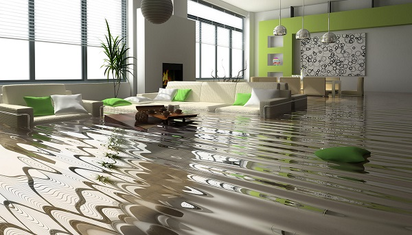 Anytime Water Damage Services