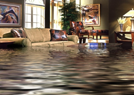 Express Water Damage Ashburn, VA 20146